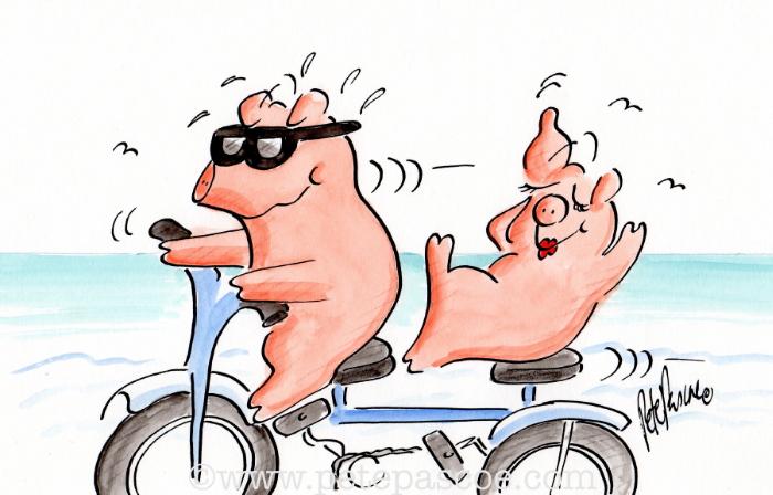 Watercolour / Ink Pigs on Tandem bike ©PetePascoe
