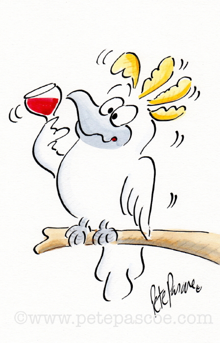 White Sulphur crested Cockatoo with red wine