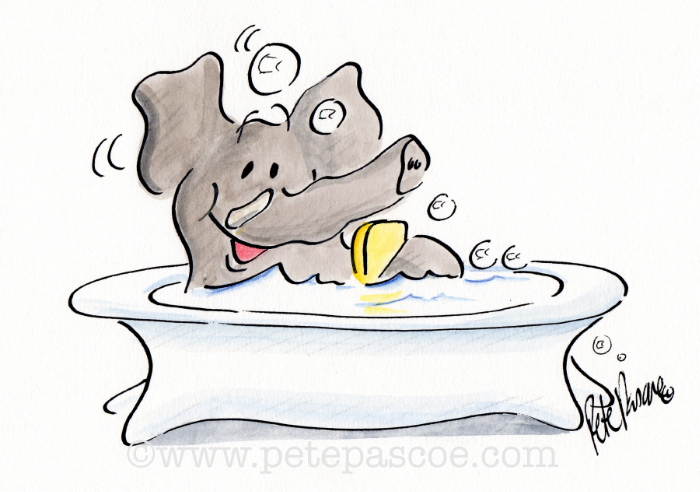 Grey Elephant in a white footed bath with bubble bath