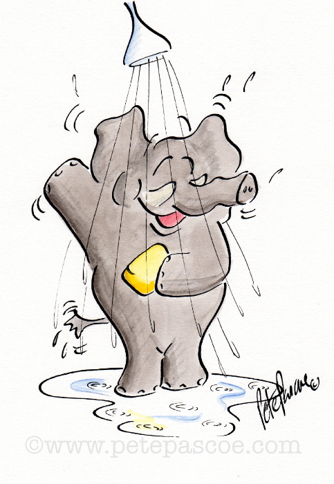 Grey Elephant standing in shower with yellow soap