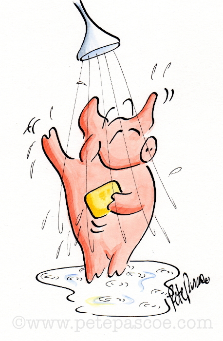 Pink Pig in Shower with yellow soap